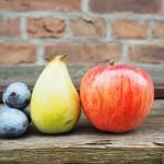 elma armut kurusu, elma armut kurusuna ne denir, elma armut testi, elma armut gibi meyvelerin yenmeyen iç bölümü, elma armut kurusu bulmaca sözlüğü, elma armut çilek kalem hangisi farklı, elma armut kurusu, bulmacada elma armut kompostosu