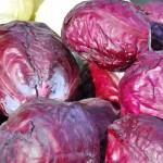 kara lahana sarması, kara lahana yemeği, kara lahana salatası, kara lahana yemeği nasıl yapılır, kara lahana yetiştiriciliği, kara lahana zayıflatırmı, kara lahana faydaları, kara lahana turşusu