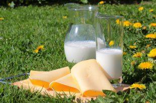 süt peşinde, süt nedir, süt modülü, süt filmi, süt kardeşler, sütaş, rüyada süt görmek, süt ürünleri nelerdir