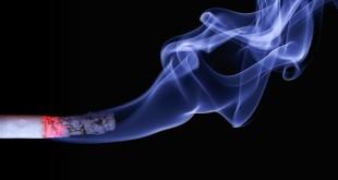 sigaranın zararları, sigara markaları, sigarayı bıraktıktan sonra, sigara bırakma, sigara fiyatları, sigara sözleri, sigara nedir
